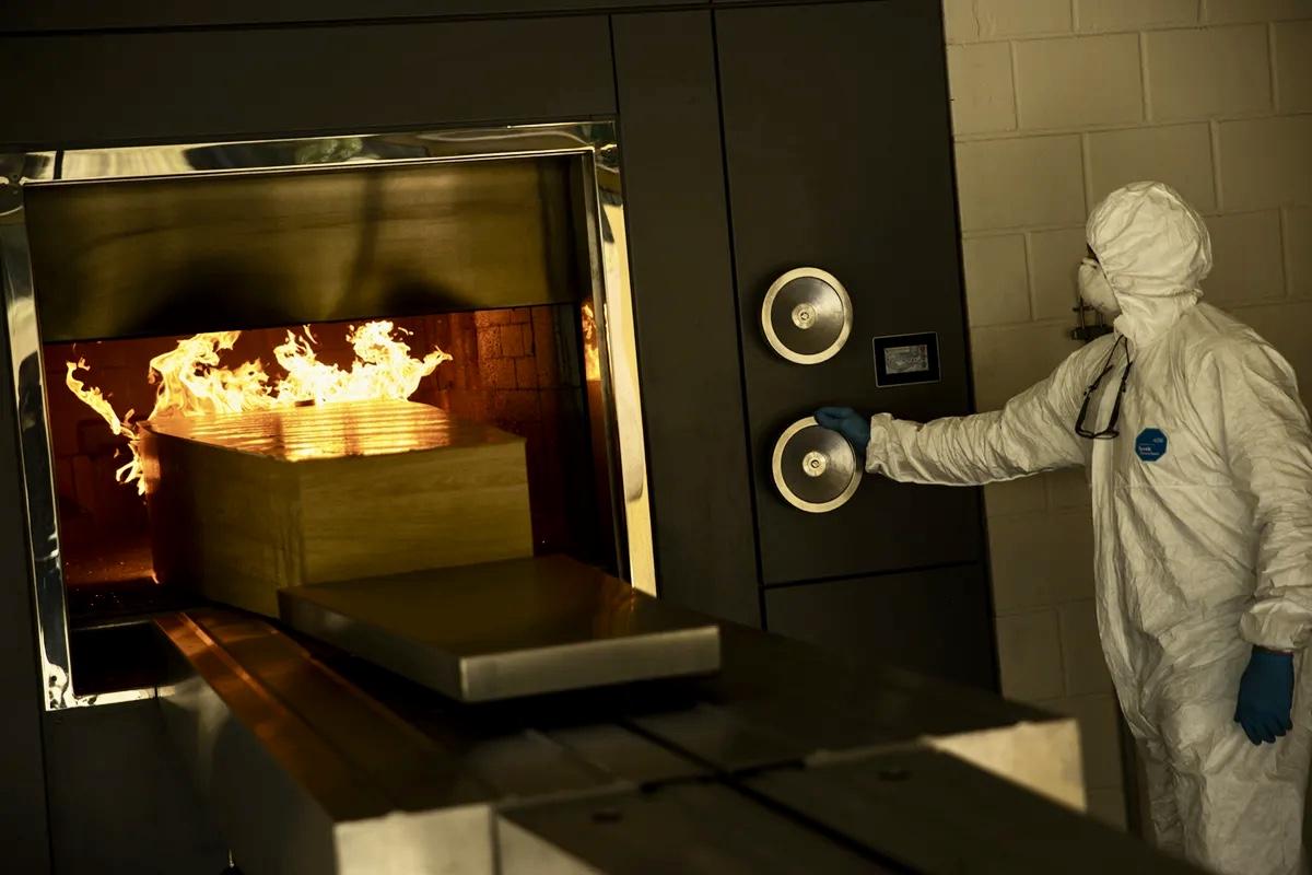 Какое действие производит кремация на живую сущность, только что покинувшую физическое тело?